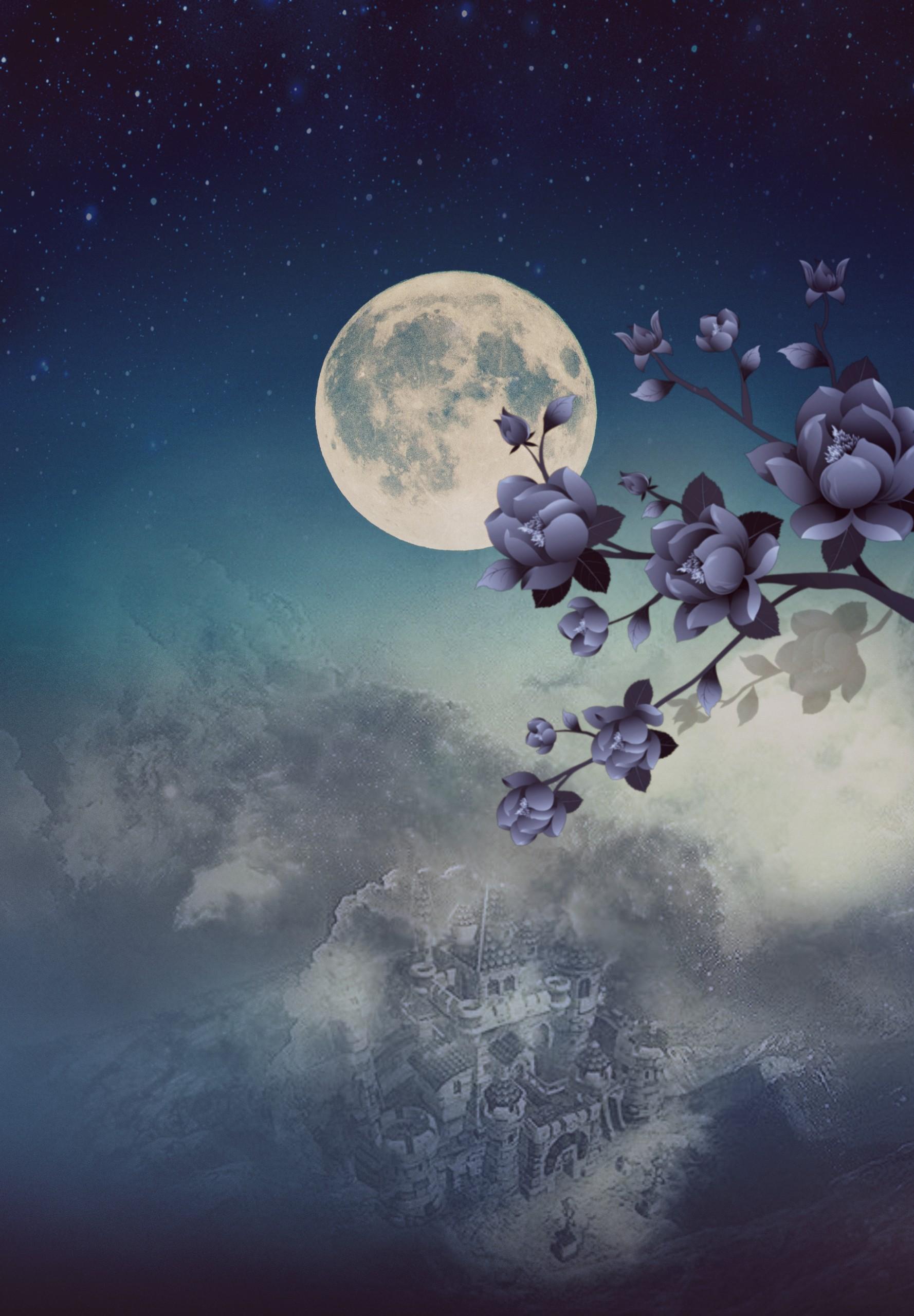@pa @picsart moon sky clouds flowers blue purple night...