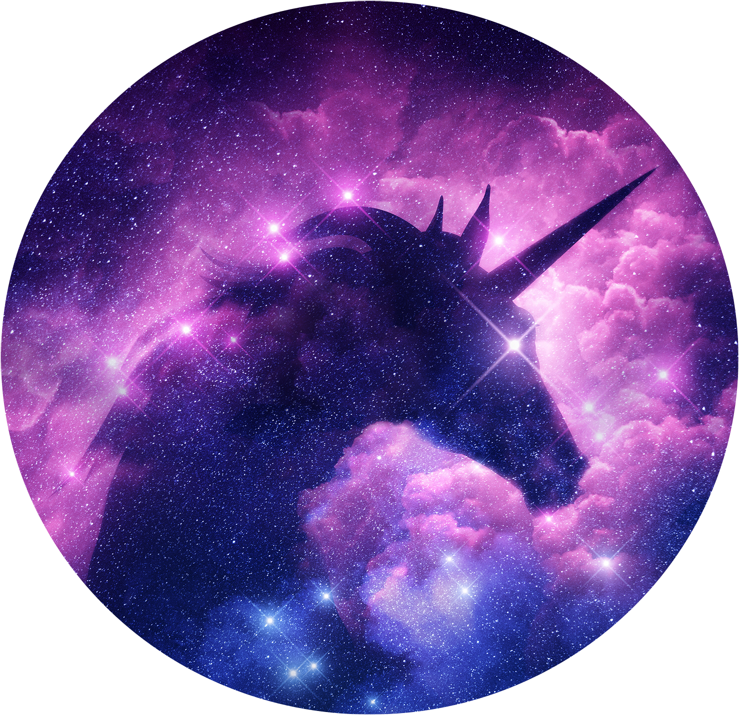 Unicorn Unicornio Galaxy Galaxia Circulo