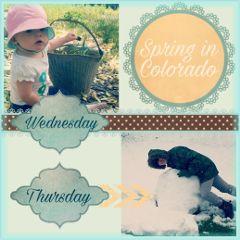 spring baby snow colorado