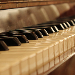 piano keys music light photography