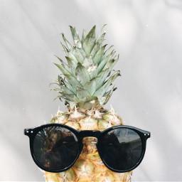 summer sunglasses pineapple cute beautiful freetoedit