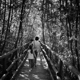 passeggiata boscoincantato