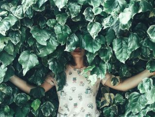 freetoedit cactus hidden woman