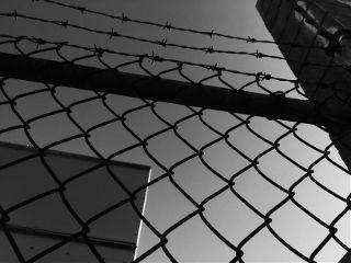 freetoedit blackandwhite dark fence