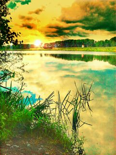 photography nature hdr