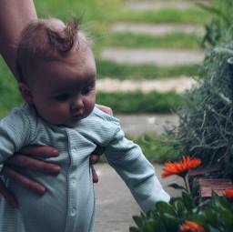 family baby grandchild mygarden flowers