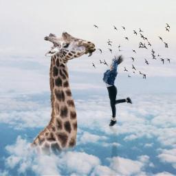 freetoedit jumpinggirlremix