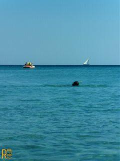 photography sea italy interesting travel