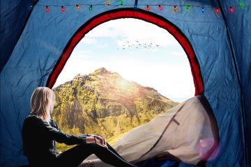 freetoedit nature camping art edited