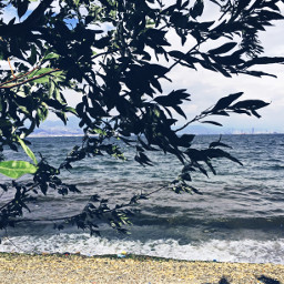 freetoedit beach