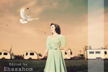shazahom1 freetoedit pigeon bird emotion