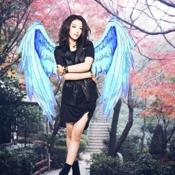 angelwings angel lockscreen homescreen ardencho freetoedit