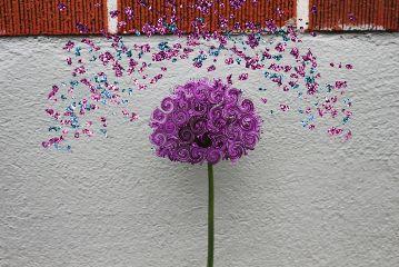 freetoedit swirl flowers cooledit