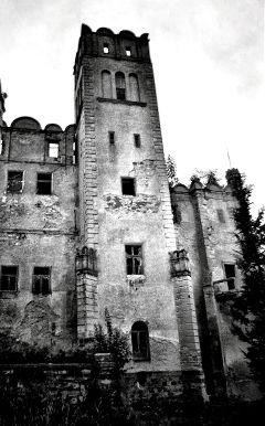 freetoedit castle ruins blackandwhite old