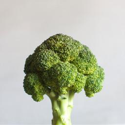 freetoedit broccoli green health spring