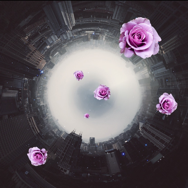 After walking for hours and hours I came to the land of flowers✨  #edit #vintageivoryeffect #doubleexposure #flower #purple Op by @bannybobanny Sticker by ? (Cant find sticker, will update when I do)