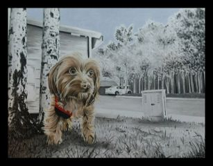 art california pets pencilart pencildrawing