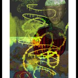 digitalcollage collage paintingtool stickers freetoedit
