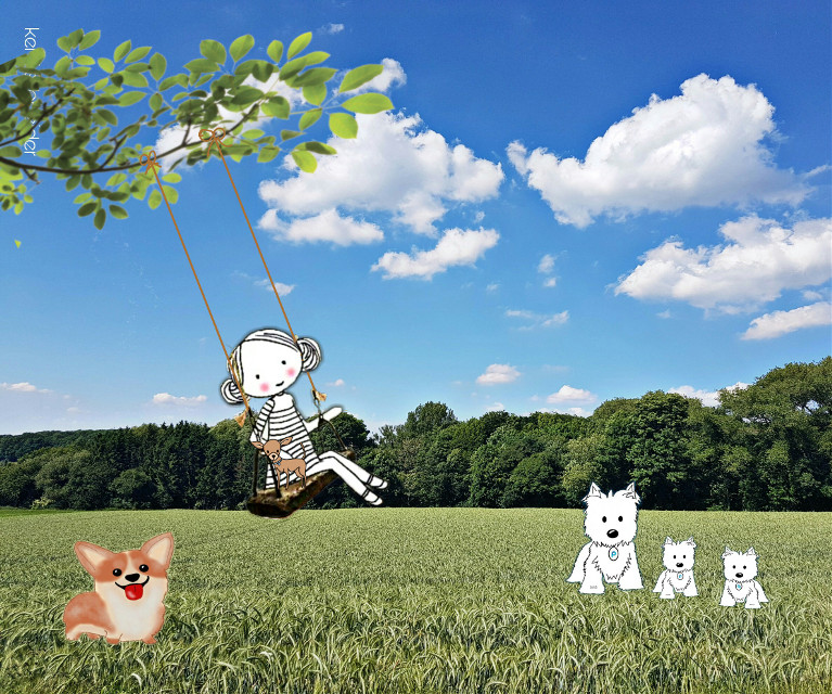 Some of my dogs (drawings) web ref used #corgi #westie #chihuahua #swing