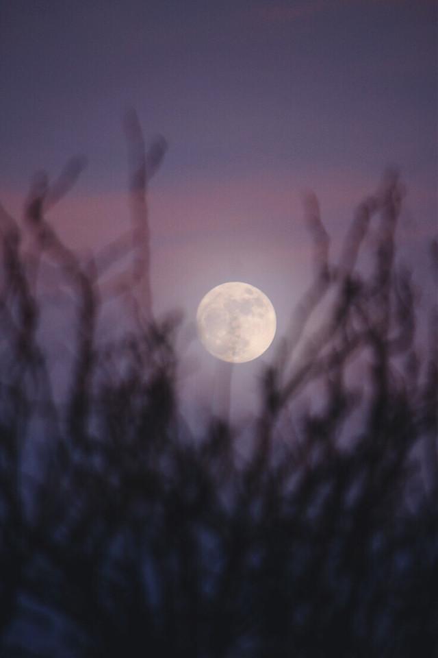 Full Moon #FreeToEdit