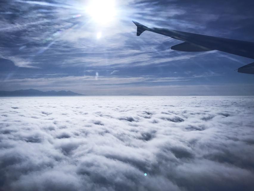 Los Angeles, 7AM  #freetoedit #usc #LA #losangeles #sky #clouds #smog #plane #trip #travel