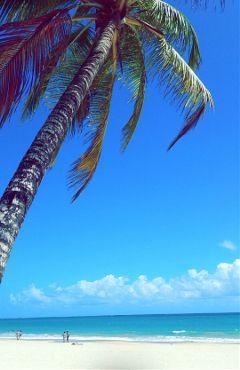 freetoedit beach myphoto myhometown caribbean