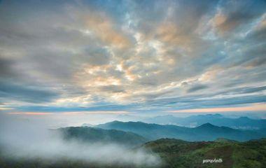 morning foggymorning photography