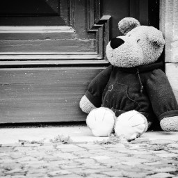 teddy lost alone blackandwhite