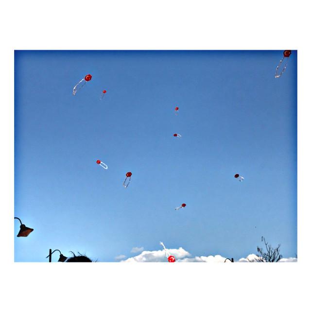 #freetoedit #uçurtma #uçurtmalar #kite #sky #blue #bluesky #like #love #likeforlike #likeit #likeforfollow