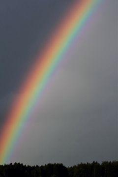 rainbow rainyday