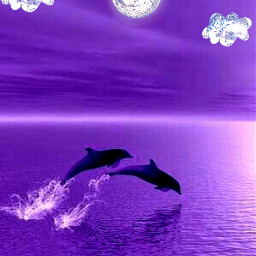 moon clouds dolphins purple
