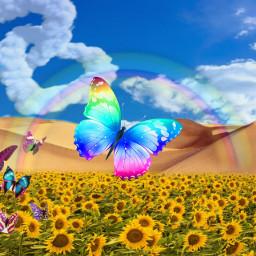 freetoedit daylysticker sky flowers arcoiris💕