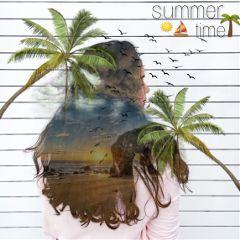 freetoedit summer sunset sun palm