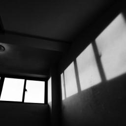 black light freetoedit
