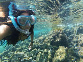 underwater snorkeling sea watercolor snorkel