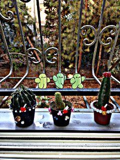freetoedit cactus cacti cute kawaii