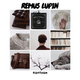 instagram aesthetic harrypotter lupin