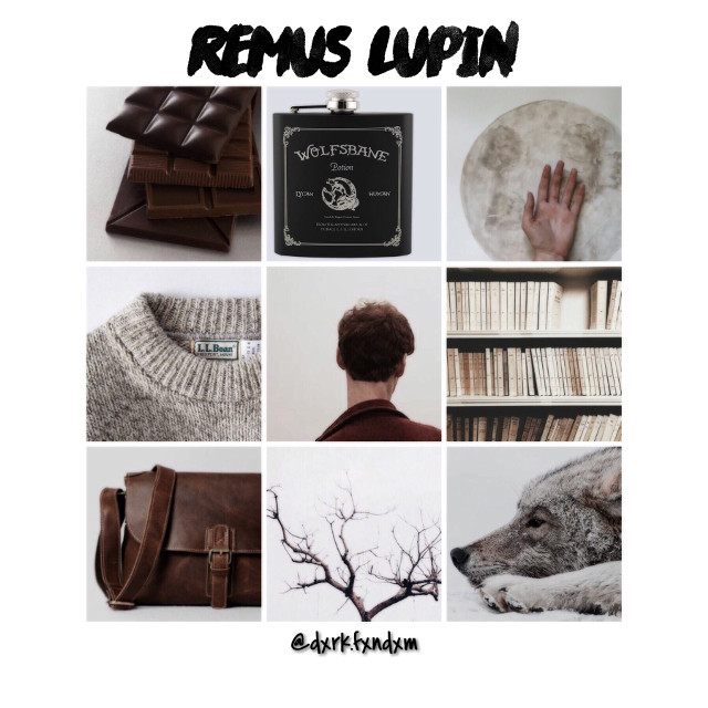 Remus Lupin Aesthetic! #instagram #aesthetic #harrypotter #lupin