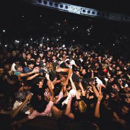 concerts freetoedit