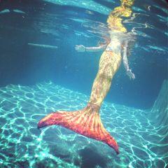 freetoedit mermaid summer interesting california