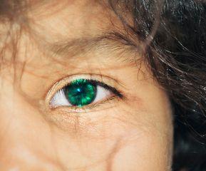 freetoedit enjoy tan eyecolor