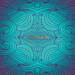 shazahom1 pattern pattrens mirrorart abstract