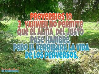 proverbios byliriosbellos fromcostarica withpicsart torah