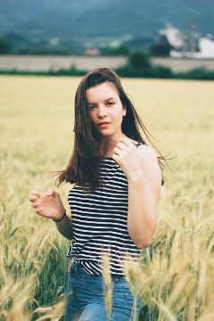 freetoedit photo photography nature wheat