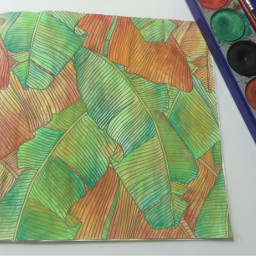 colouringbook watercolor leaves