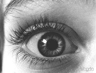 freetoedit blackandwhite eye