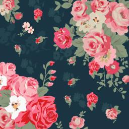 freetoedit background wallpaper floral