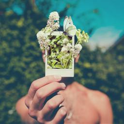 myrmx flowers oilpaintingeffect erasetool vintageeffect freetoedit