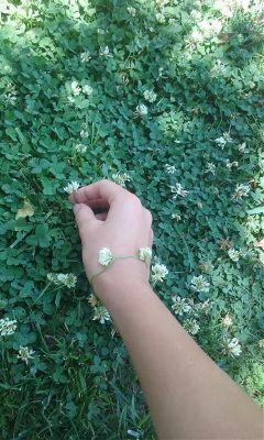 flowers grass nature green white freetoedit