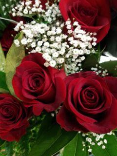 freetoedit roses arrangement